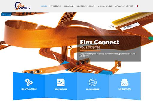Flex Connect site web
